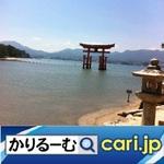 15_torii200127w500x500.jpg