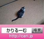 IMG_20160910_1518182.jpg