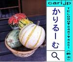 w500-kabotya-110926-1600.jpg