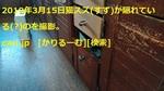 1903151103KIMG0411logo.jpg