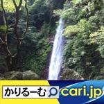 17_yoro200127w500x500.jpg