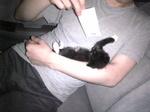 黒白子猫 サブ Image101.jpg